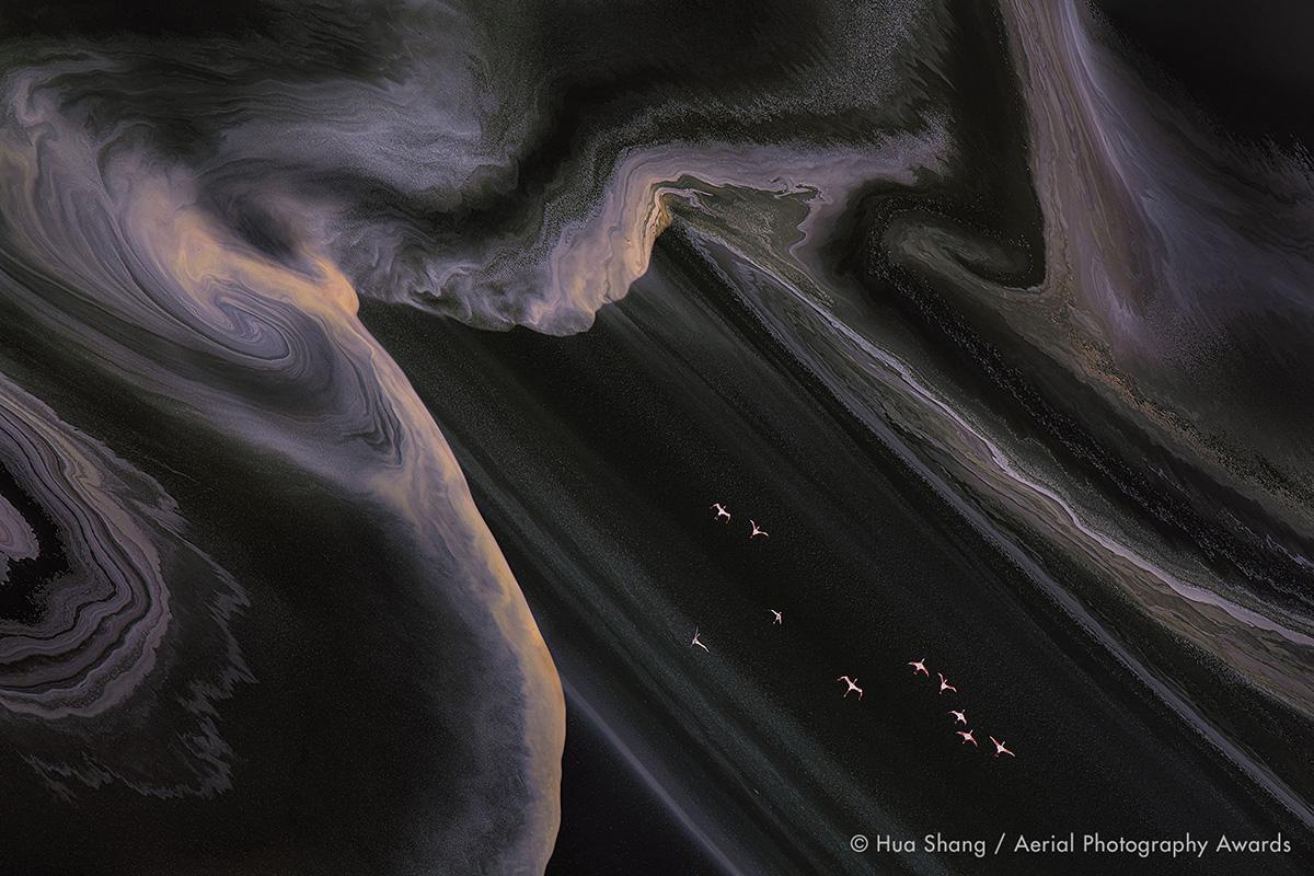 Flying Flamingos Hua Shang Aerial Photography Awards 2020